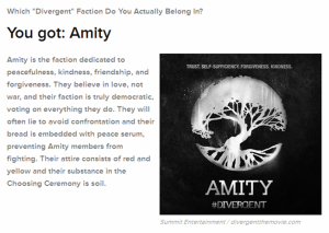 Amity Divergent Faction Buzzfeed
