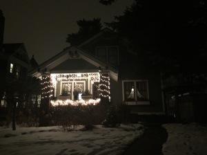 St. Paul Christmas Lights