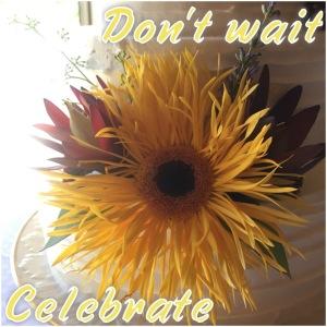 don't wait celebrate